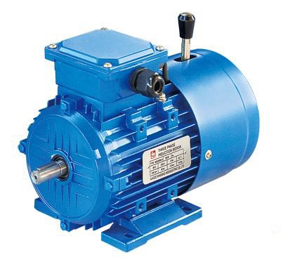 Motors Direct 2 Pole 3 Phase Induction Brake Motor C